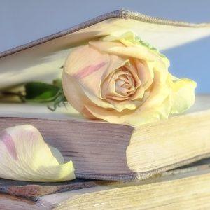 conseils et aides pour ecrire mon livre